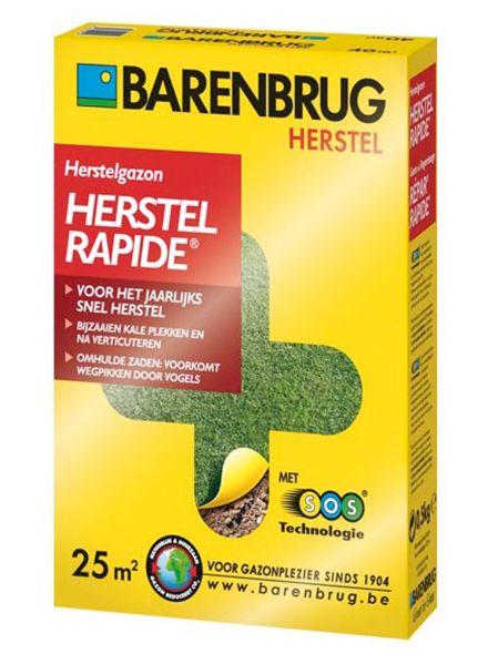 Barenbrug Herstelgazon Rapide 500 gram