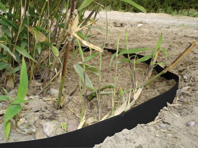 Bamboebegrenzer (10 meter x 70 cm)