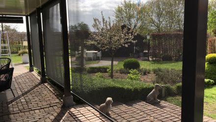 Oprolbaar windscherm Vento (Terrasscherm)