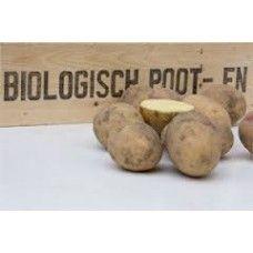 Carolus pootaardappelen (5 kg, kruimige aardappel)