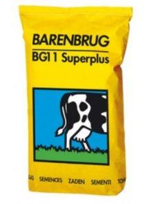 Barenbrug BG 11 Super (2,5 kg graszaad voor weidegras)