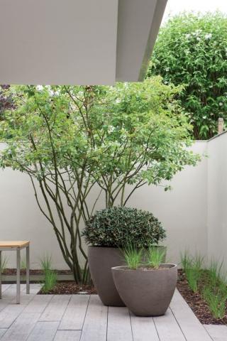 Design pot voor op je terras ?