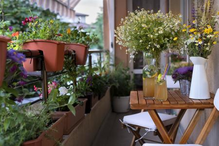 Mini-tuinieren