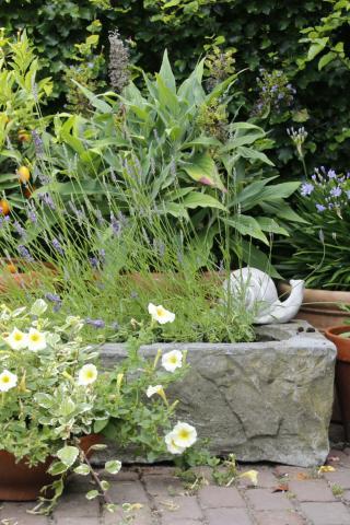 Aangenaam vertoeven in eigen tuin...