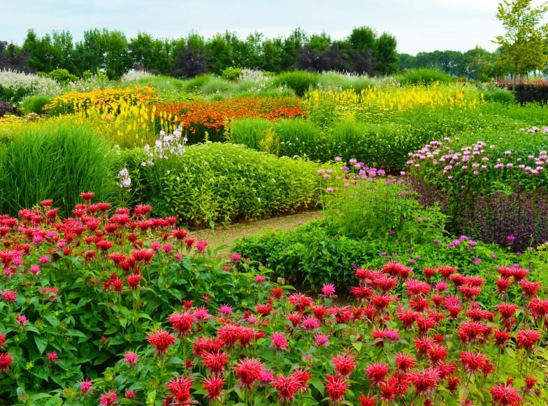 Vaste Planten Tuin : Nationale vaste plantentuin de tuinen van appeltern