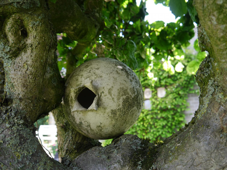 Kunstzinnige tuin