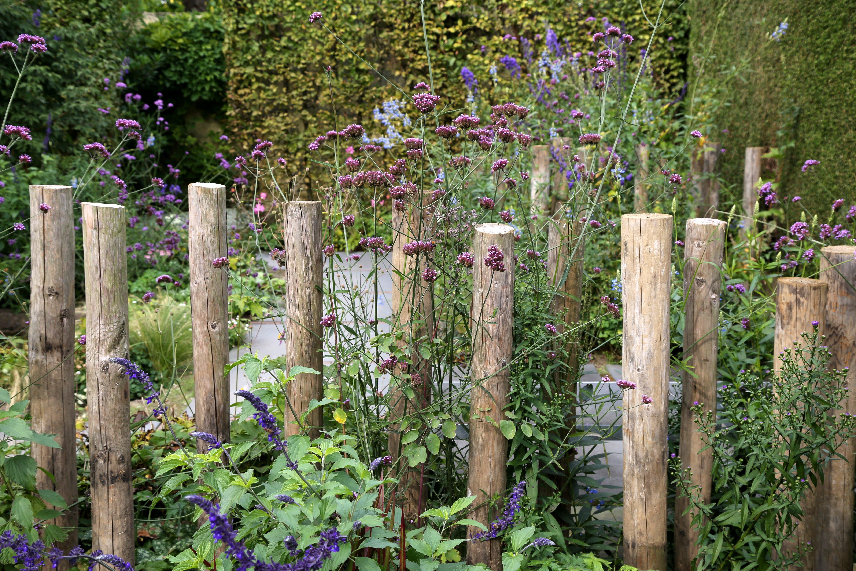 Super 60 tips voor een onderhoudsvriendelijke tuin | De Tuinen van Appeltern ZT-75