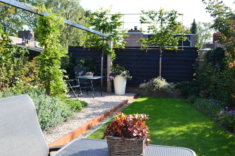Contemporary Urban Garden
