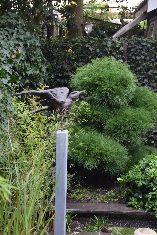 Strakke binnenstadstuin in Amsterdam Zuid met bestaande plantenbakken