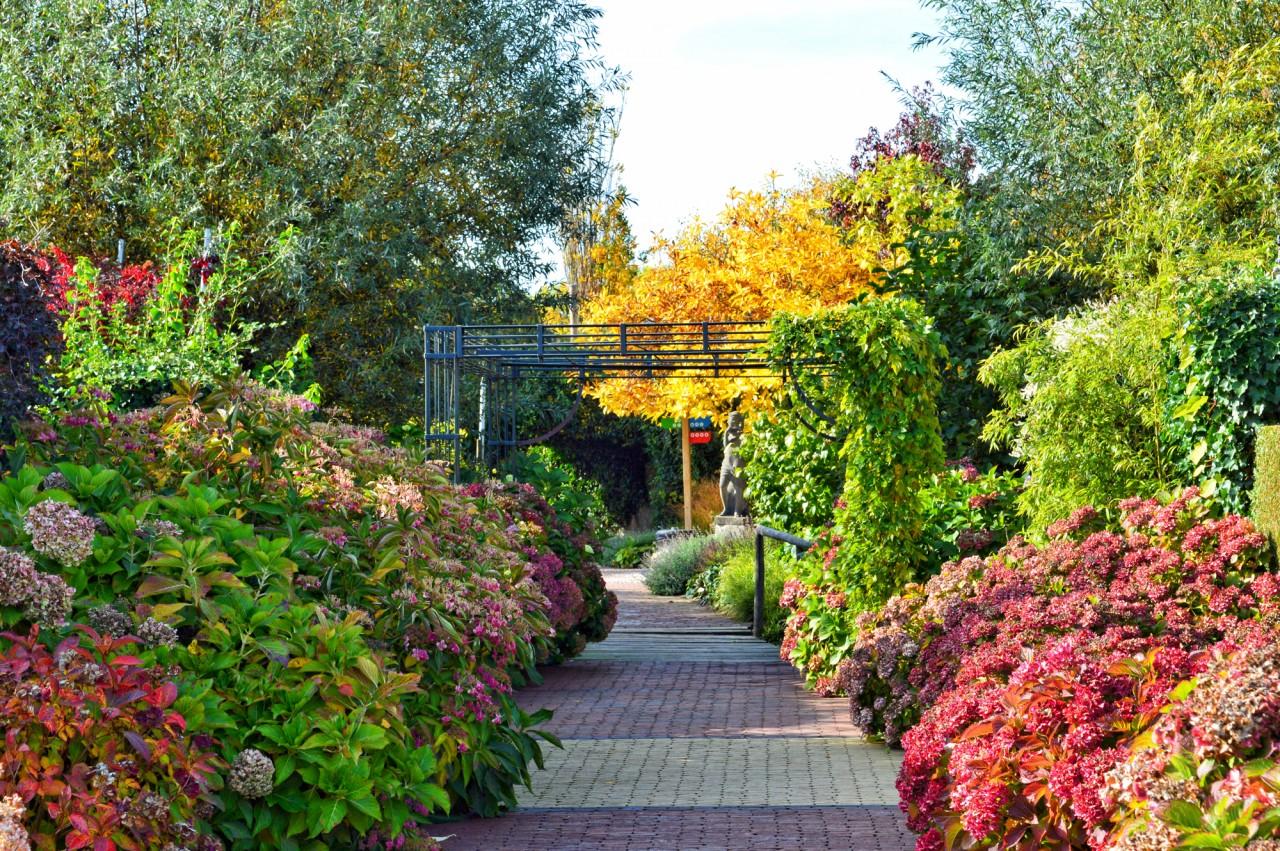 Meer dan 10.000 tuinproducten