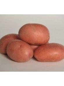 Tiamo 2,5 kg (vastkokende aardappel)