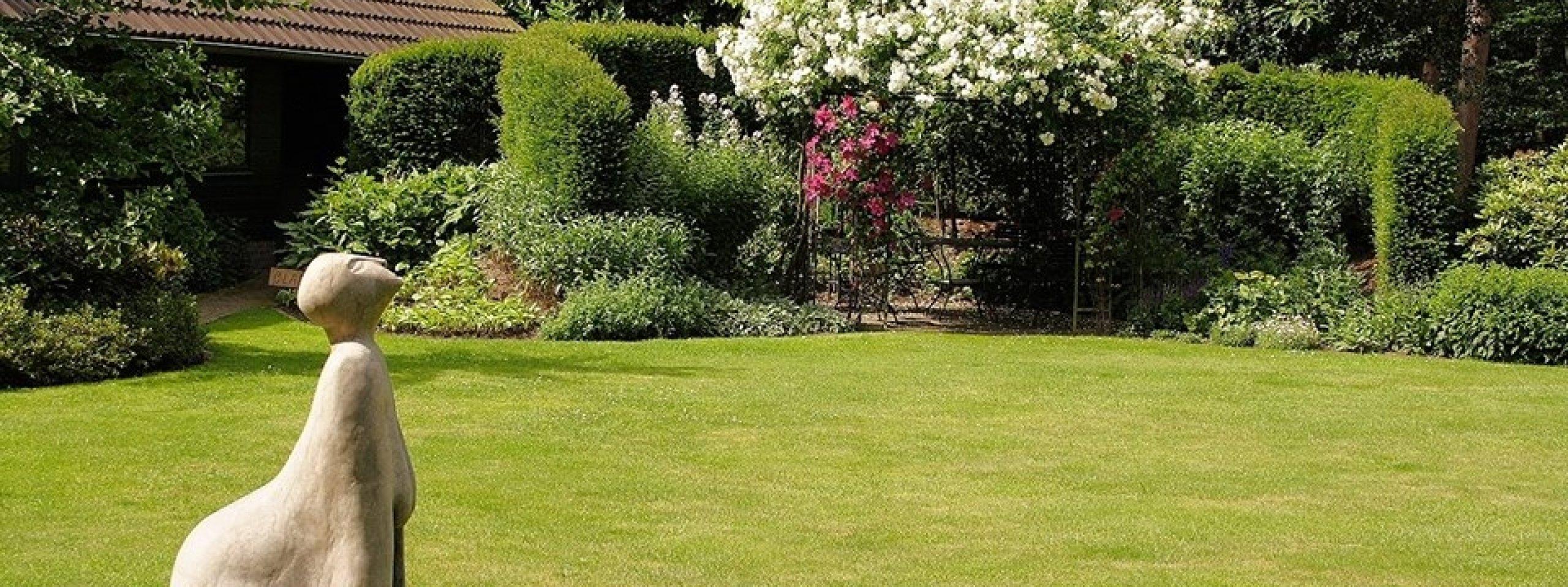 Tuinvoorbeelden