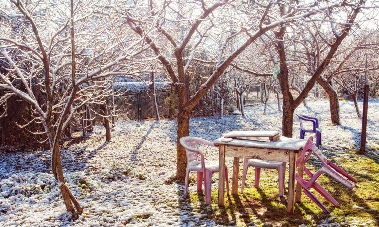 Tuinonderhoud in januari