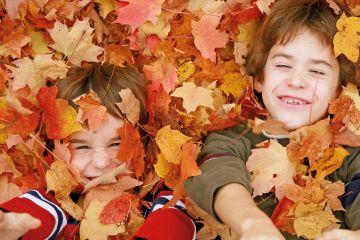 Herfst ticket | Kind (6-12 jaar)