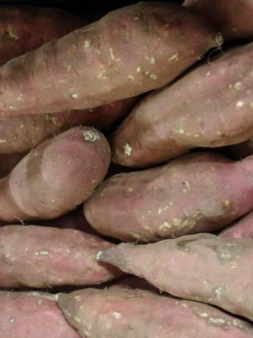 Ipomoea batatas  - Bataat , Zoete aardappel