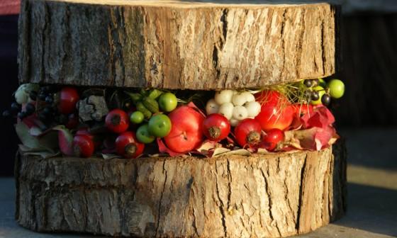Inloopworkshop: Maak een herfstfreubel op boomschijf!