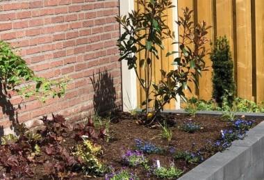 Levensloop bestendige tuin