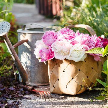 Doe jezelf een tuincadeau!