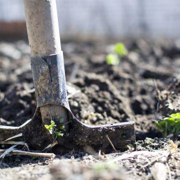 Zet de tuin naar je hand