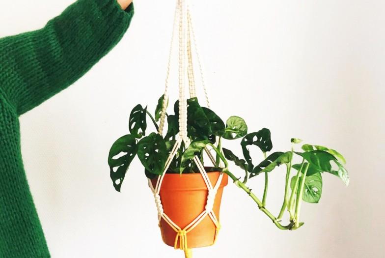 Workshop: Macramé plantenhanger maken