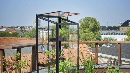 Verrijdbare patiokas City Garden