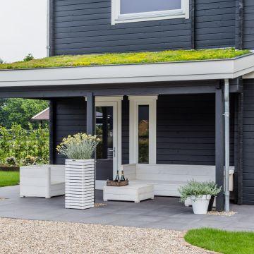 Een duurzamer huis? Ga dan voor een groen dak!