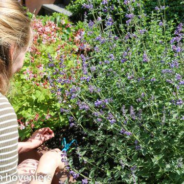 Tuinieren is gezond!