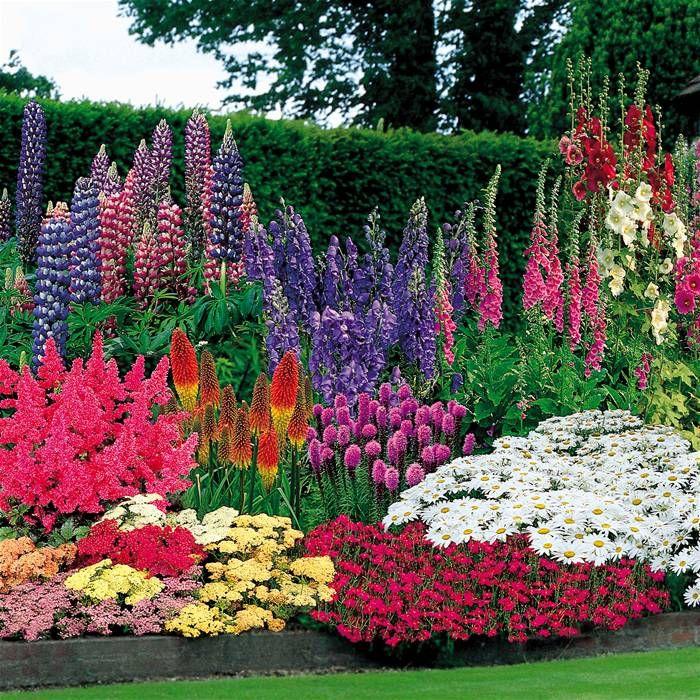 Vaste Planten Voor In De Tuin.Snoeiregels Vaste Planten De Tuinen Van Appeltern