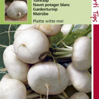Rapen Platte Witte Mei (Tuinraap zaad)