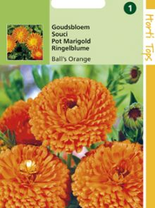 Calendula officinalis Ball's Orange (zaad Goudsbloem, dubbelbloemig)