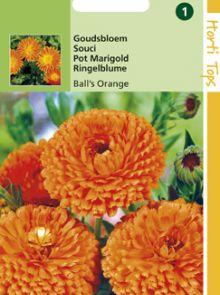 Calendula officinalis Ball's Orange (zaad Goudsbloem, dubbelbloemig)