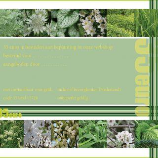 Tuinplanten cadeaubon 35 euro - 1 stuks