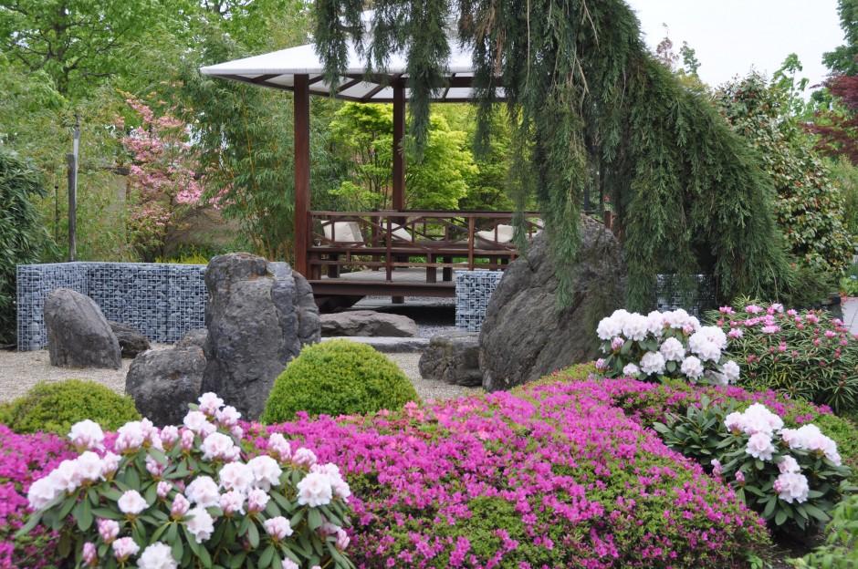 Oosterse tuin de tuinen van appeltern - Ontwerp van de tuin ...