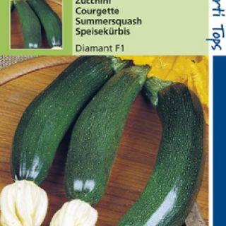 Courgette (Zucchini) Diamant F1 Hybride