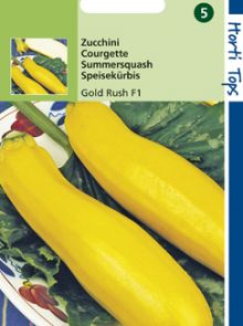 Courgette (Zucchini) Gold Rush F1 Hybride