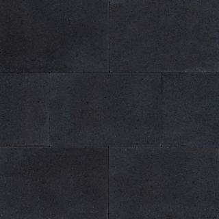 Terras-steen 20x30x4cm zwart (1,2 m2)