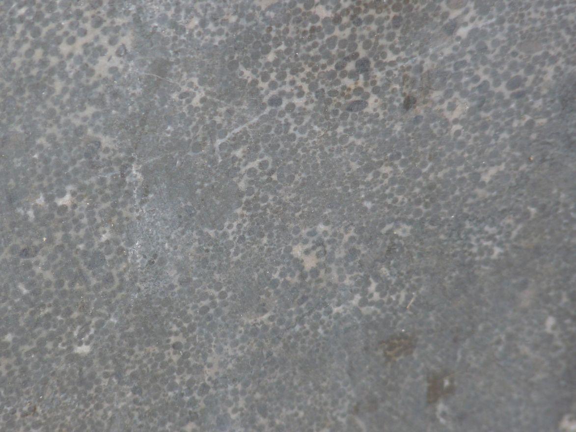 Hardstenen vijverrand 100 x 20 cm verzoet (Chinees hardsteen, Spotted Bluestone, Siam Bluestone)
