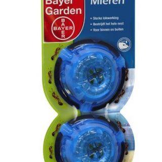 Bayer Piron pushbox 2 stuks  /  art. 1060446