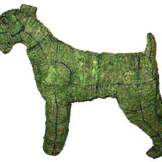 Airedale terrier 80 x 105 x 28 cm met mos