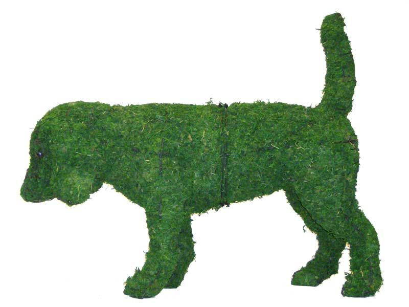Beagle 52x65x18 cm met mos