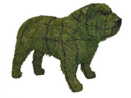 Bulldog 41x65x28 cm met mos