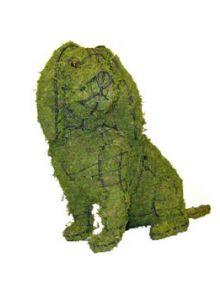 Cavalier zittend 42x59x25 cm met mos
