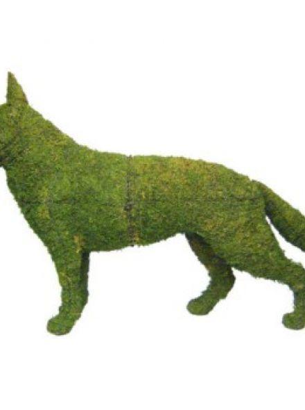 Duitse Herder Staand 89x125x30 cm met mos