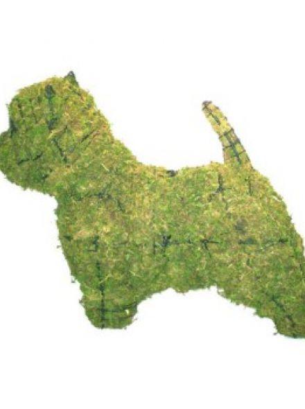 Westie 37x49x16 cm met mos