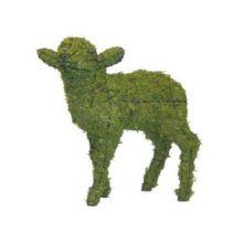 Lam hoofd op 46x46x18 cm met mos