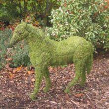 Paard 43x41x13 cm met mos