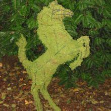 Paard Steigerend 50x31x9 cm met mos