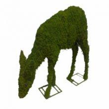 Hert grazend 78x96x28 cm met mos