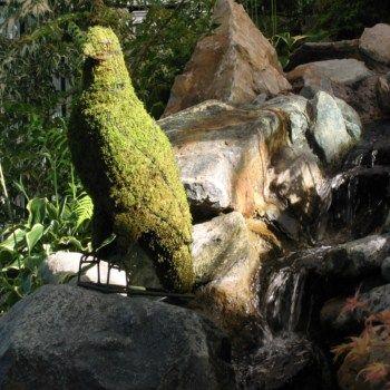 Arend zittend 61x58x23 cm met mos