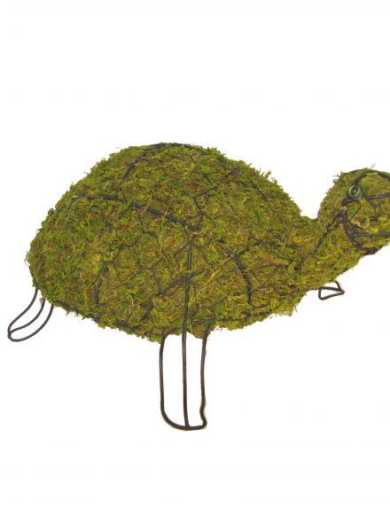 Schildpad 13x30x20 cm met mos
